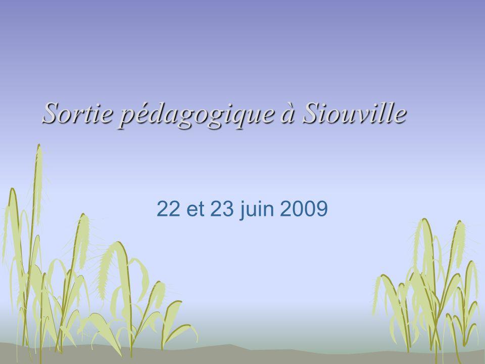 Sortie pédagogique à Siouville