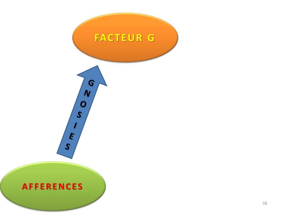 FACTEUR G G N O S I E AFFERENCES