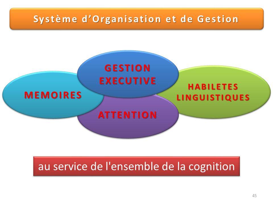 Système d'Organisation et de Gestion