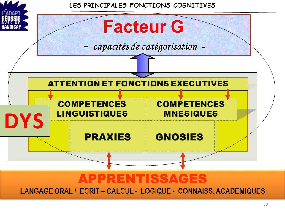 DYS Facteur G - capacités de catégorisation -