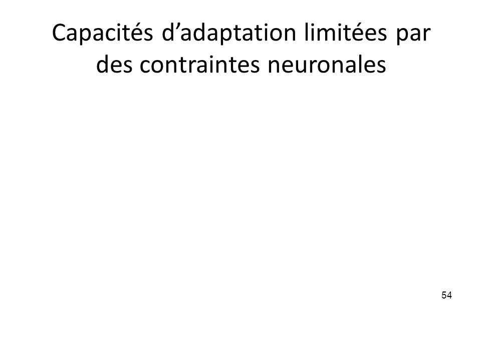 Capacités d'adaptation limitées par des contraintes neuronales