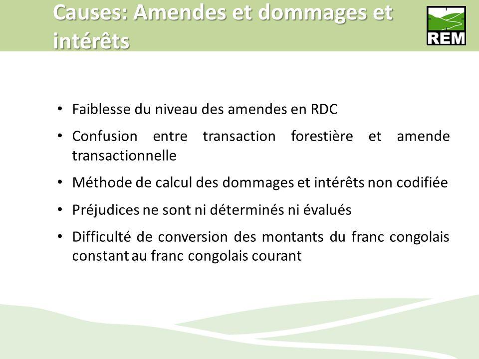 Causes: Amendes et dommages et intérêts