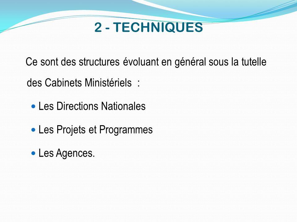 2 - TECHNIQUES Ce sont des structures évoluant en général sous la tutelle des Cabinets Ministériels :