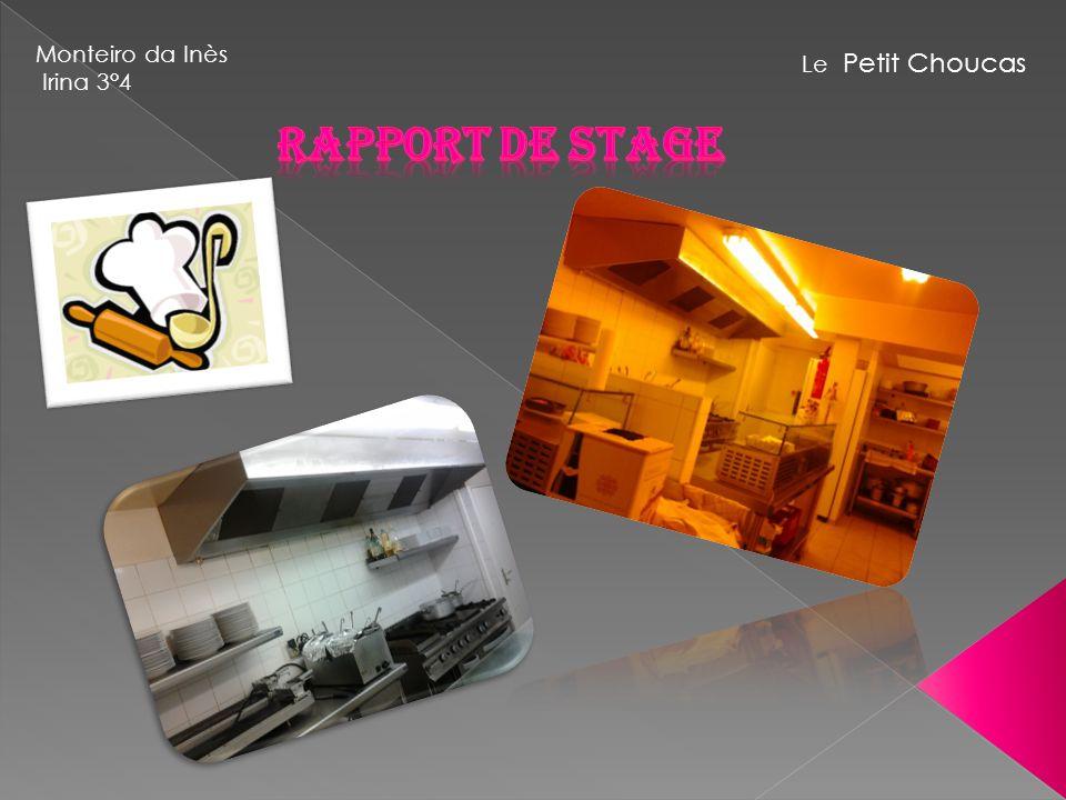 Monteiro da Inès Irina 3°4 Le Petit Choucas Rapport de Stage