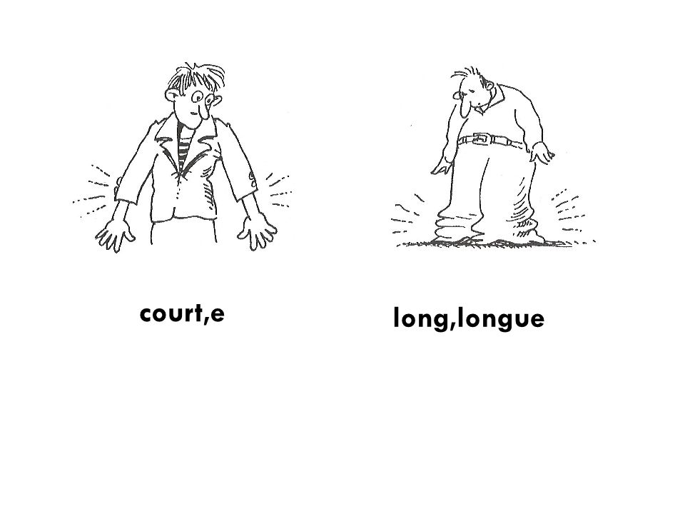court,e long,longue