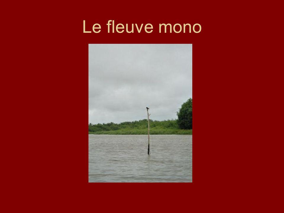 Le fleuve mono