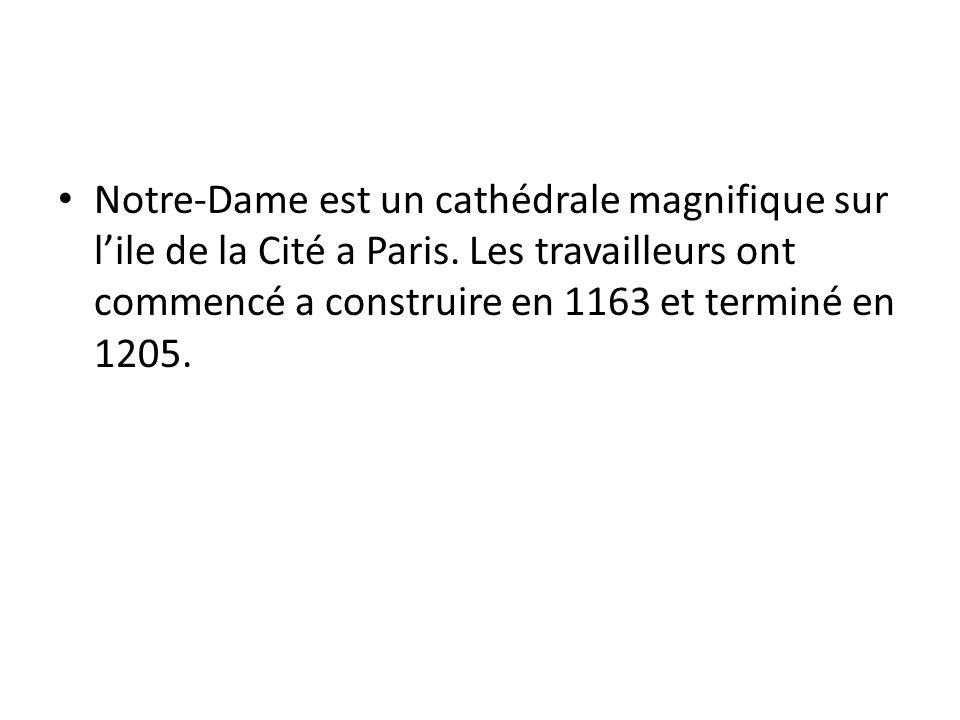 Notre-Dame est un cathédrale magnifique sur l'ile de la Cité a Paris