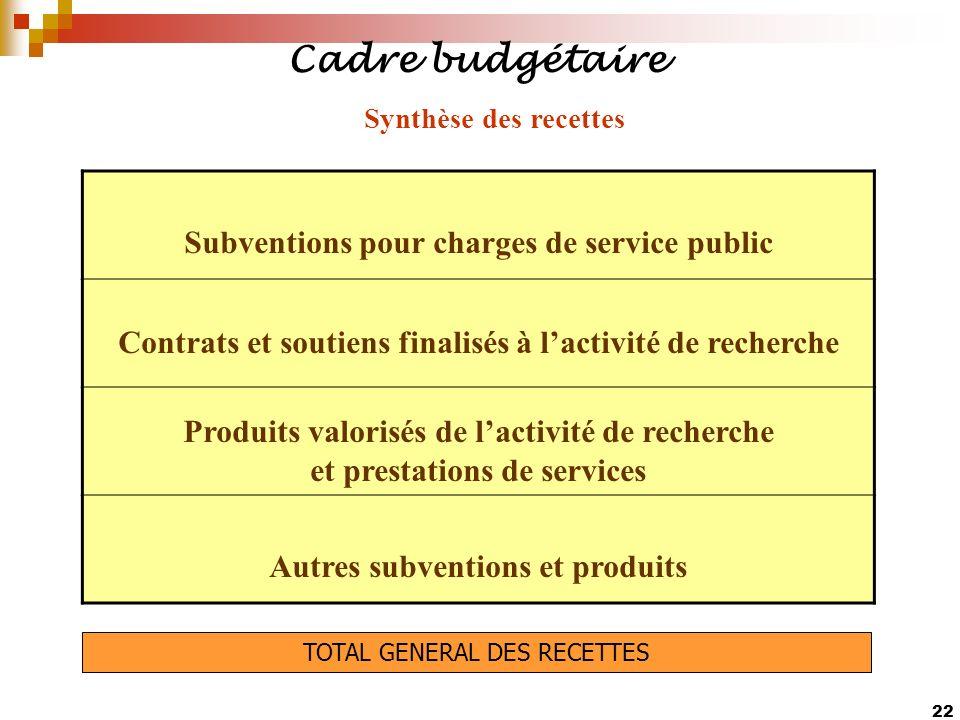 Cadre budgétaire Subventions pour charges de service public
