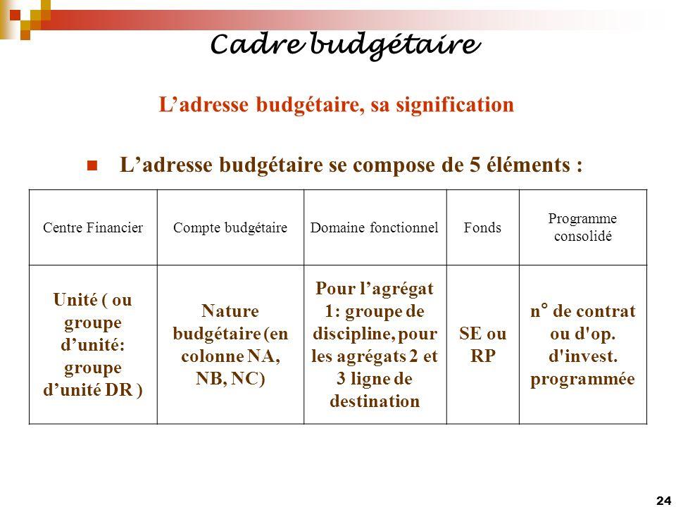 Cadre budgétaire L'adresse budgétaire, sa signification