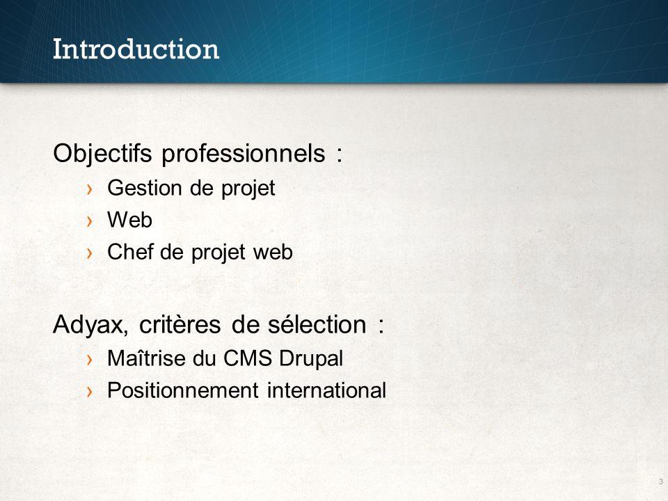 Introduction Objectifs professionnels : Adyax, critères de sélection :