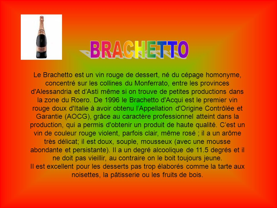 BRACHETTO
