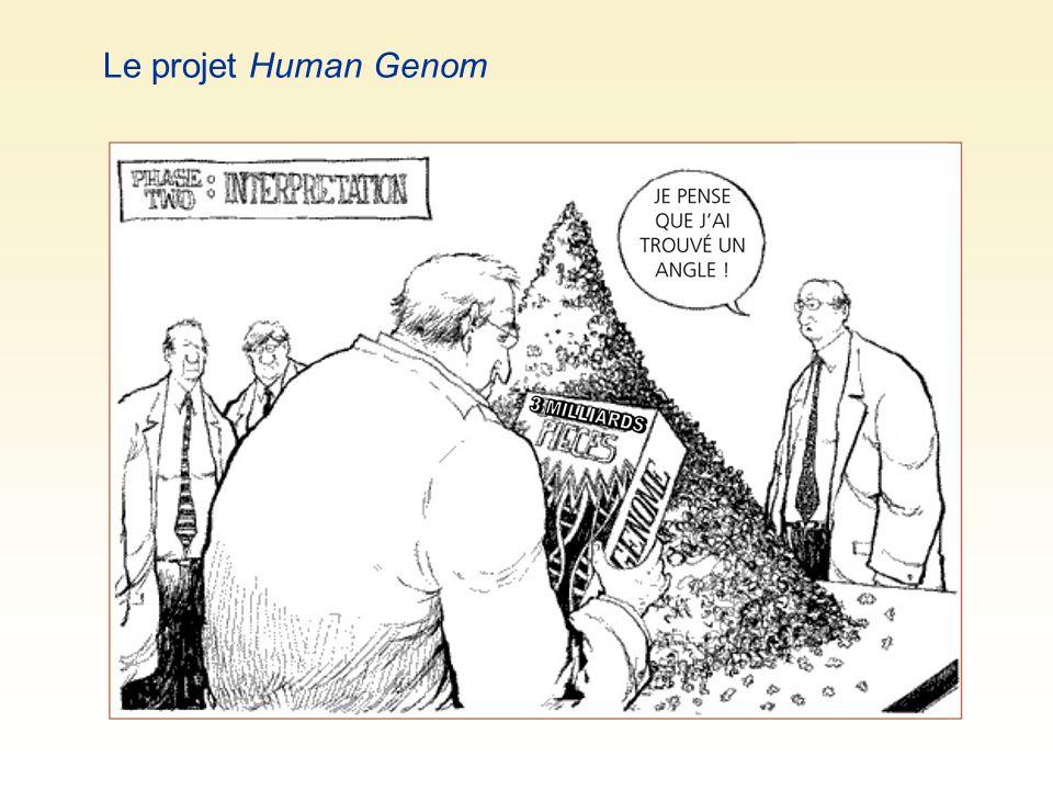 Le projet Human Genom