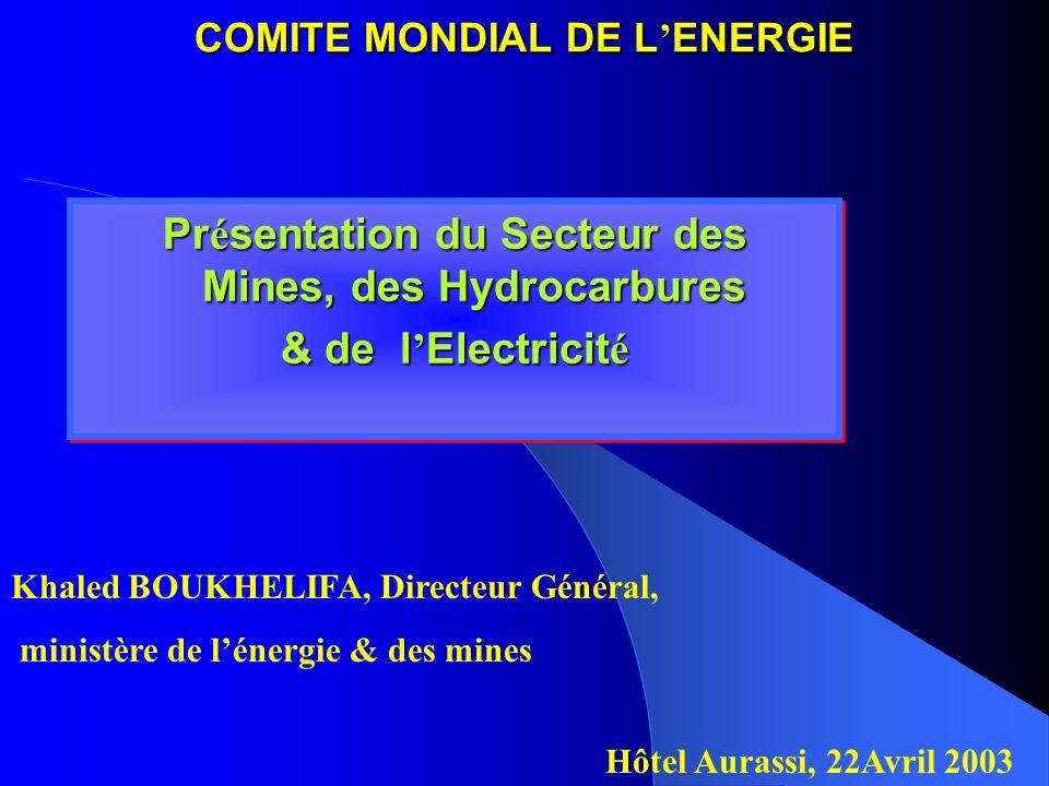 COMITE MONDIAL DE L'ENERGIE