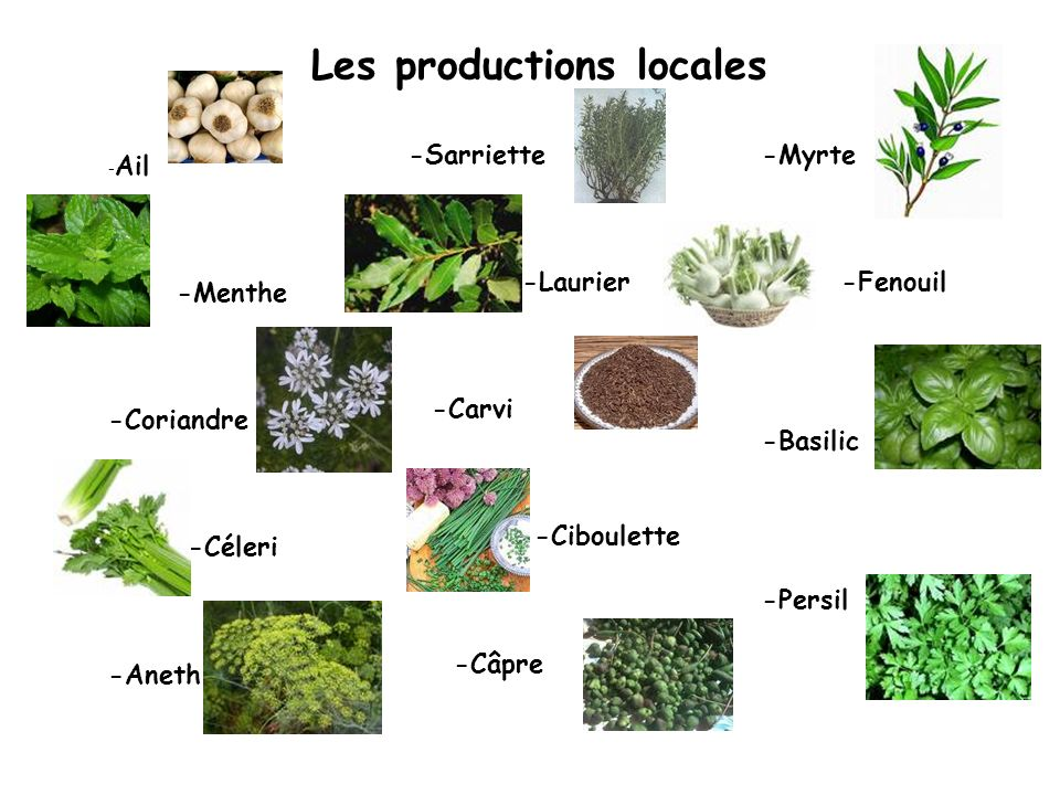 Les productions locales