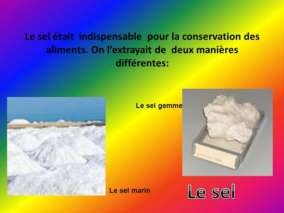 Le sel était indispensable pour la conservation des aliments
