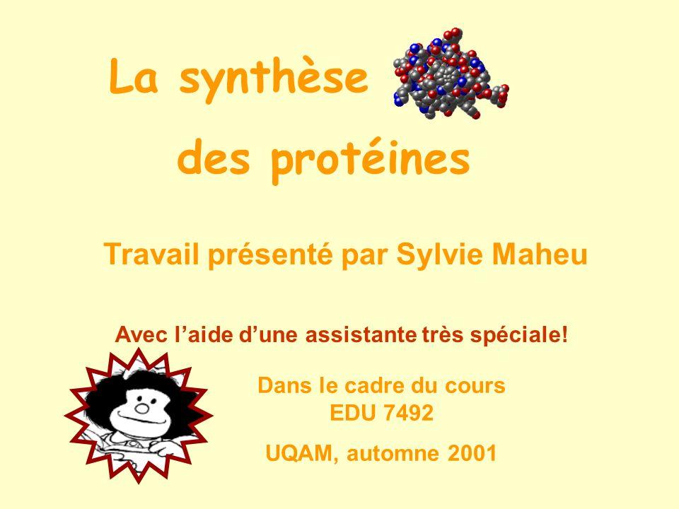 La synthèse des protéines Travail présenté par Sylvie Maheu