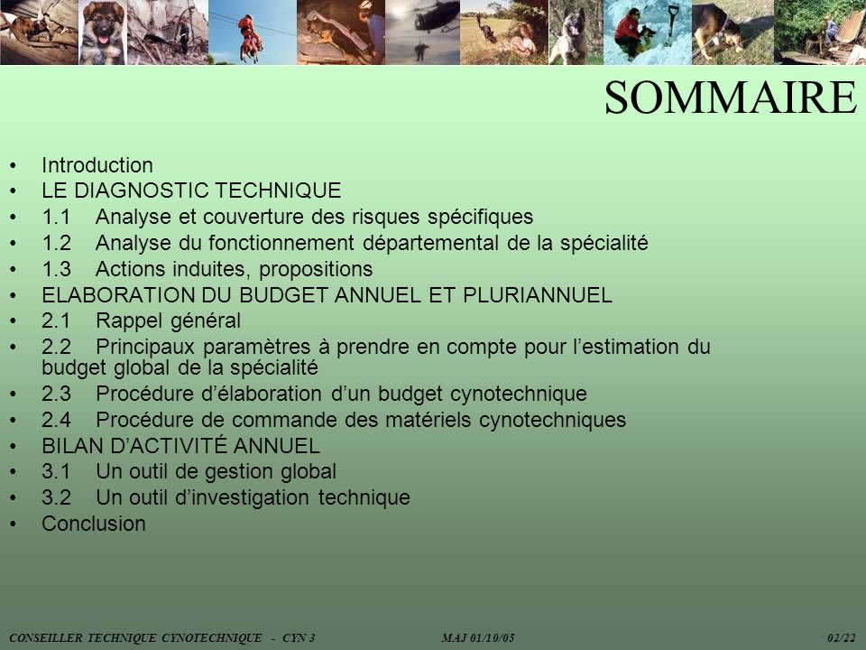 SOMMAIRE Introduction LE DIAGNOSTIC TECHNIQUE