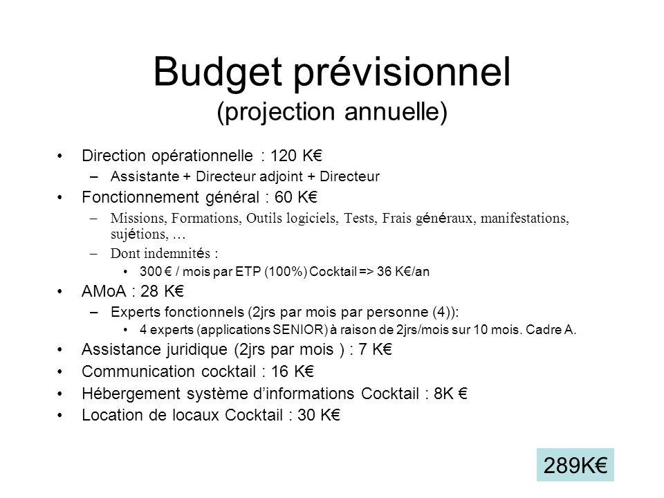 Budget prévisionnel (projection annuelle)
