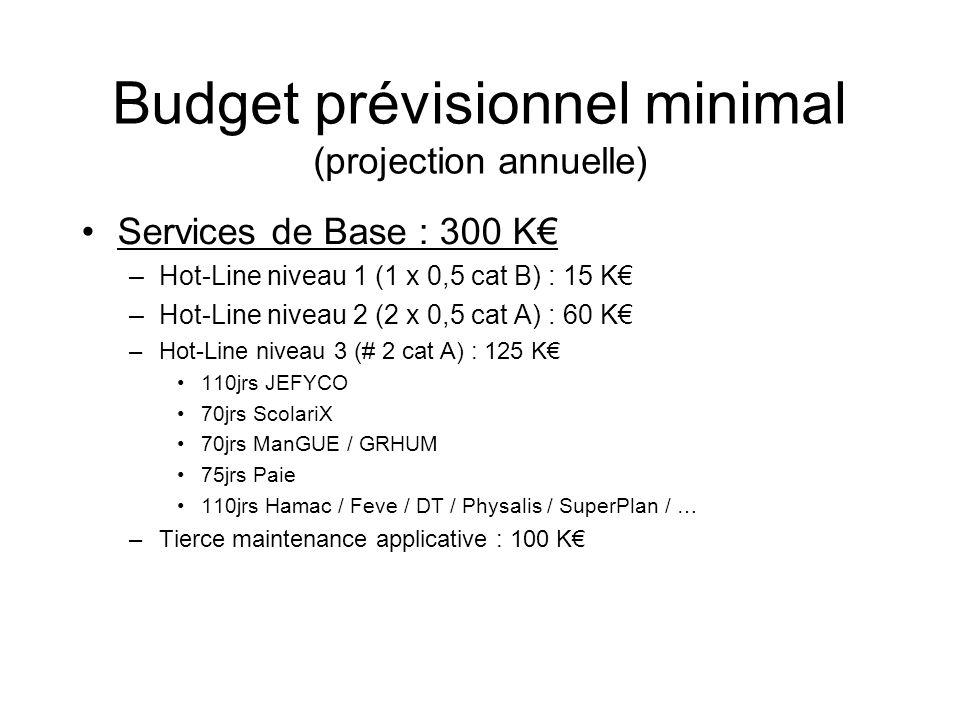 Budget prévisionnel minimal (projection annuelle)