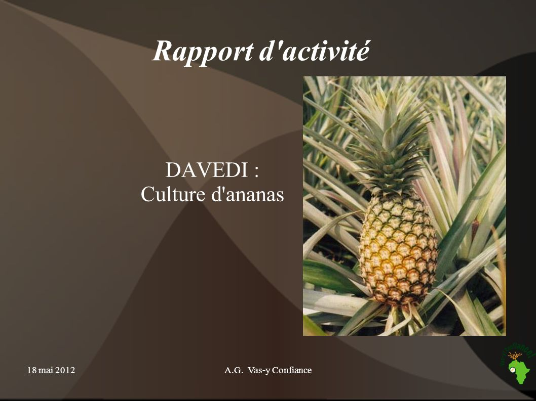 DAVEDI : Culture d ananas