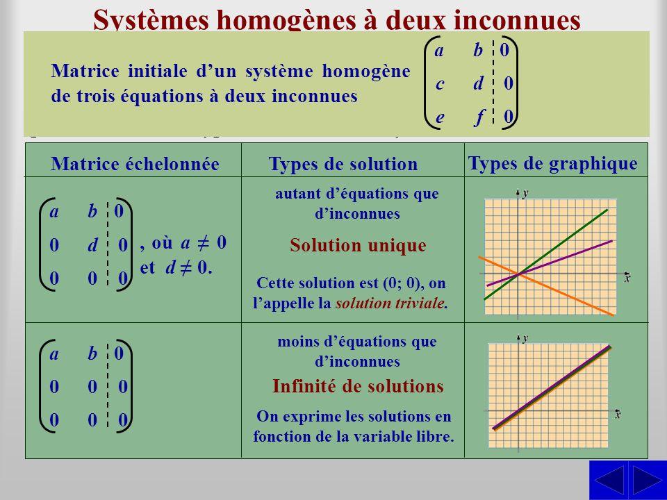 Systèmes homogènes à deux inconnues