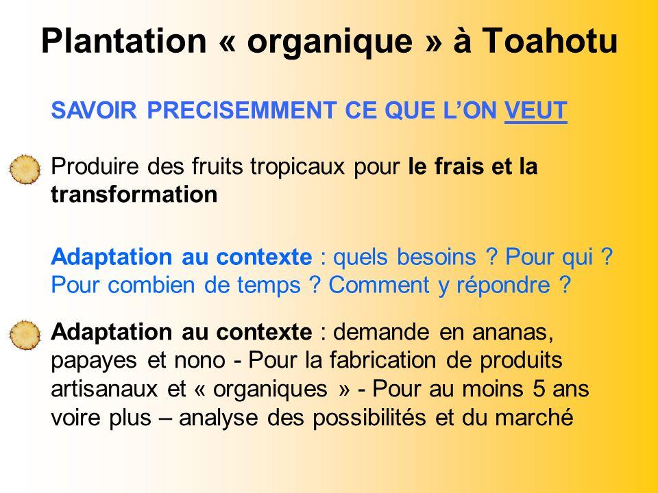 Plantation « organique » à Toahotu