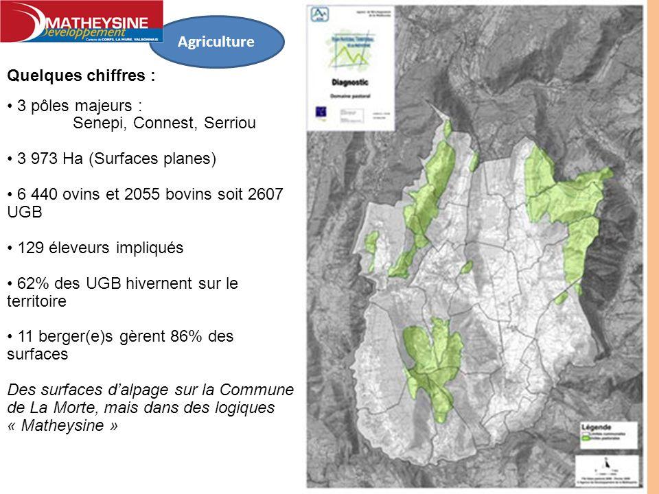 Agriculture Quelques chiffres : 3 pôles majeurs : Senepi, Connest, Serriou. 3 973 Ha (Surfaces planes)