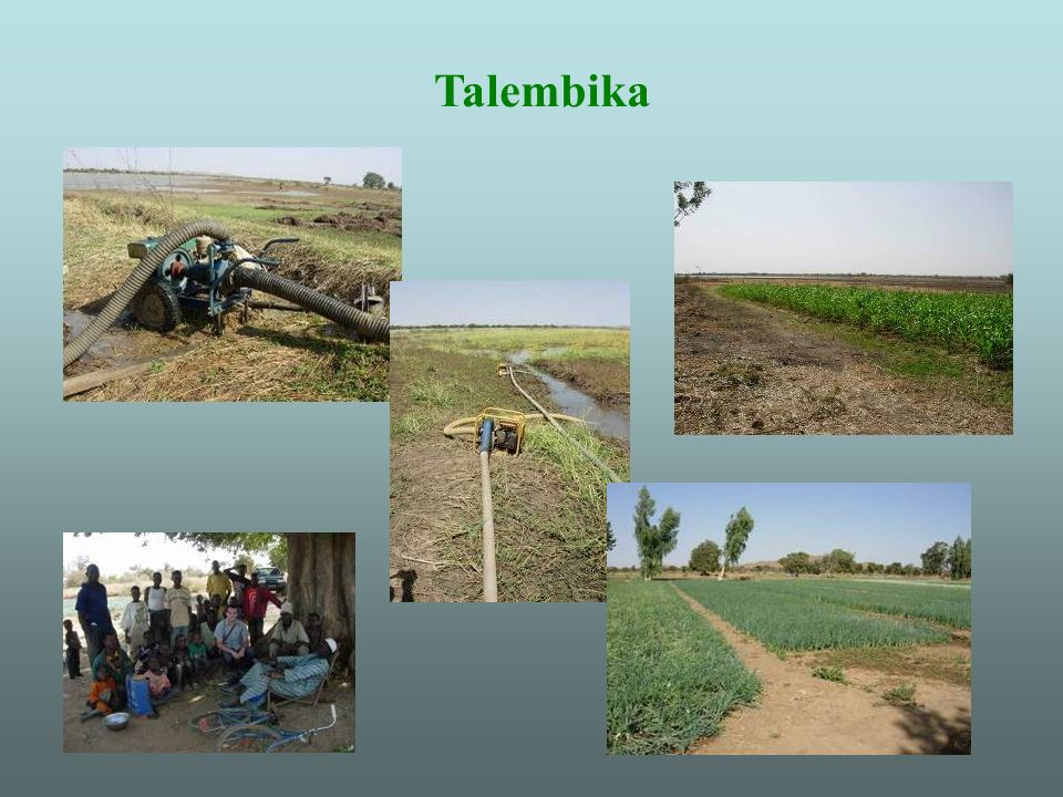 Talembika