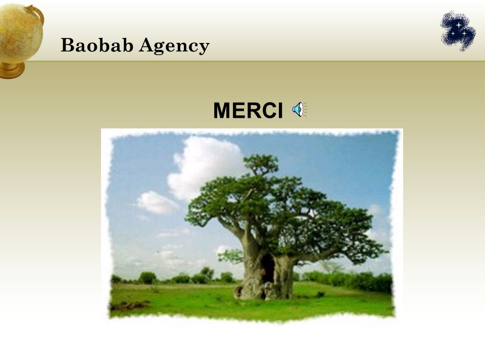 Baobab Agency MERCI