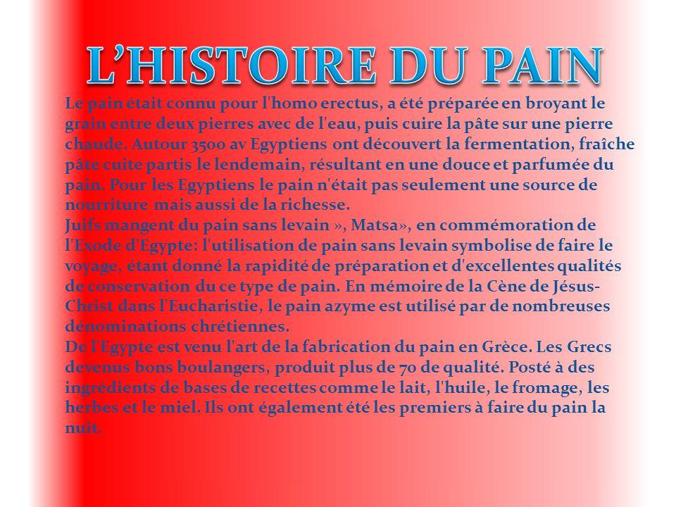 L'HISTOIRE DU PAIN