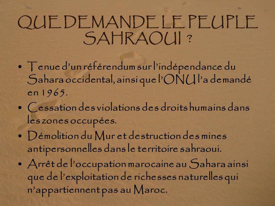 QUE DEMANDE LE PEUPLE SAHRAOUI