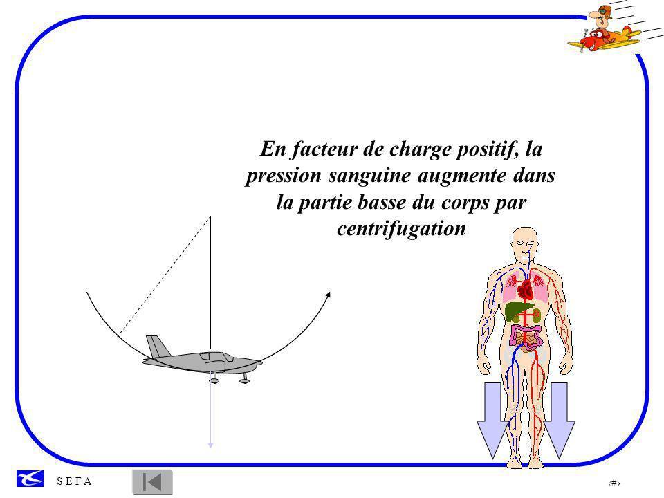 En facteur de charge positif, la pression sanguine augmente dans la partie basse du corps par centrifugation