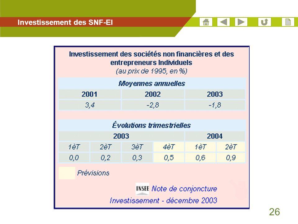 Investissement des SNF-EI