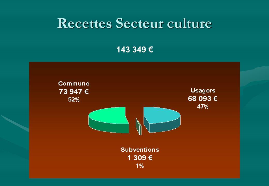 Recettes Secteur culture