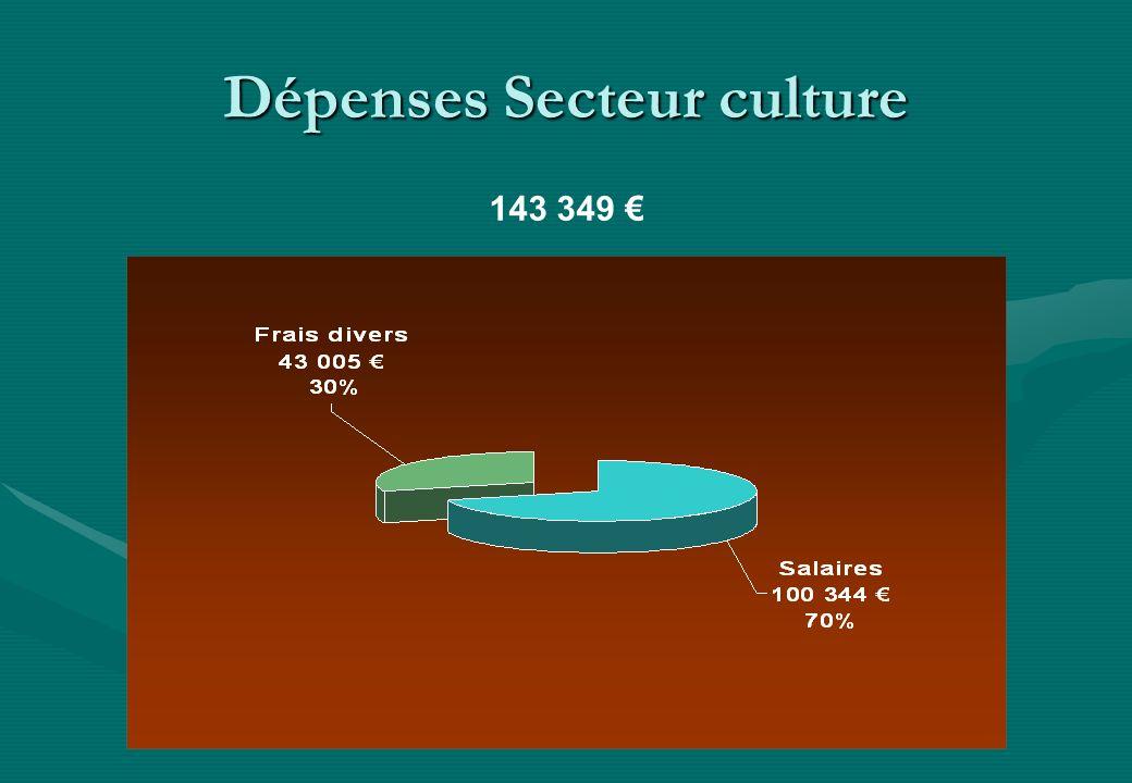 Dépenses Secteur culture