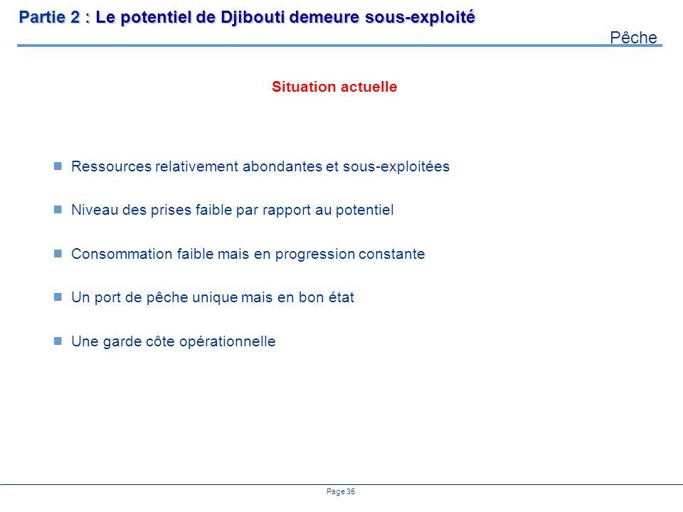 Partie 2 : Le potentiel de Djibouti demeure sous-exploité Pêche