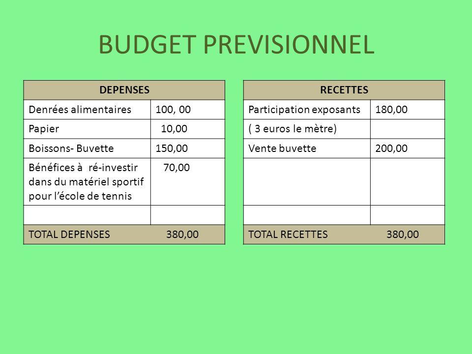 BUDGET PREVISIONNEL DEPENSES Denrées alimentaires 100, 00 Papier 10,00