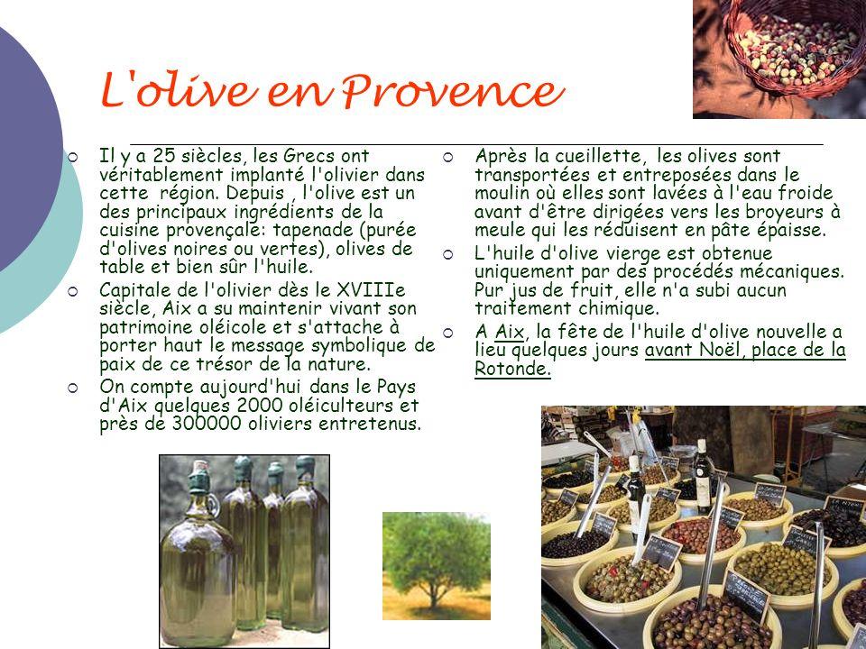 L olive en Provence