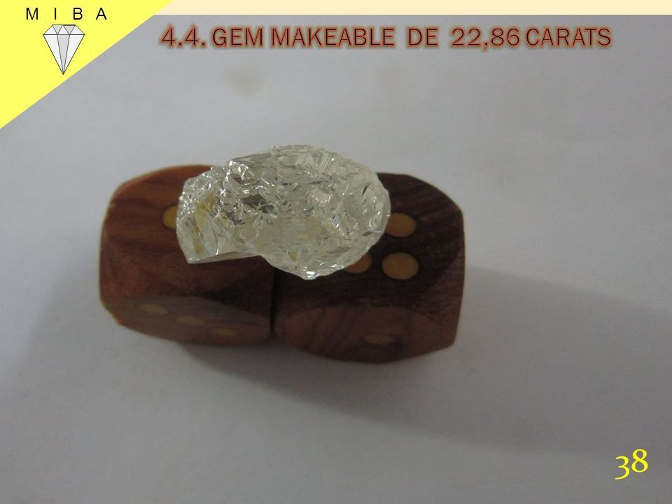 M I B A 4.4. GEM MAKEABLE DE 22,86 CARATS 38