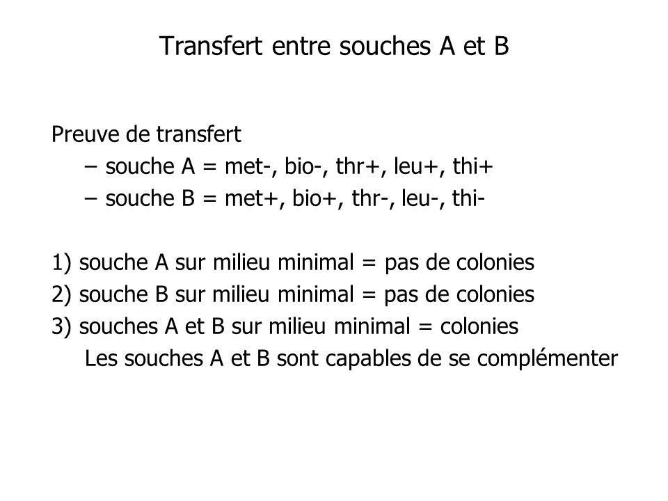Transfert entre souches A et B
