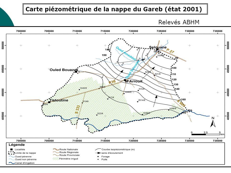 Carte piézométrique de la nappe du Gareb (état 2001)