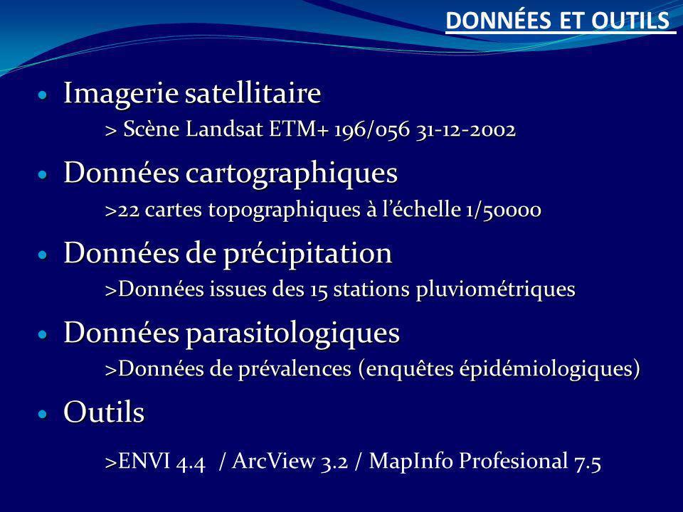 Imagerie satellitaire > Scène Landsat ETM+ 196/056 31-12-2002