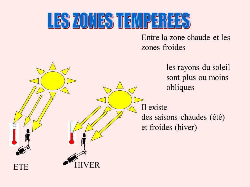 LES ZONES TEMPEREES Entre la zone chaude et les zones froides