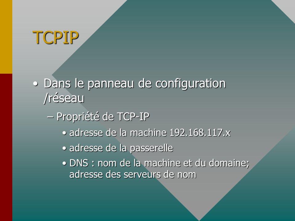 TCPIP Dans le panneau de configuration /réseau Propriété de TCP-IP