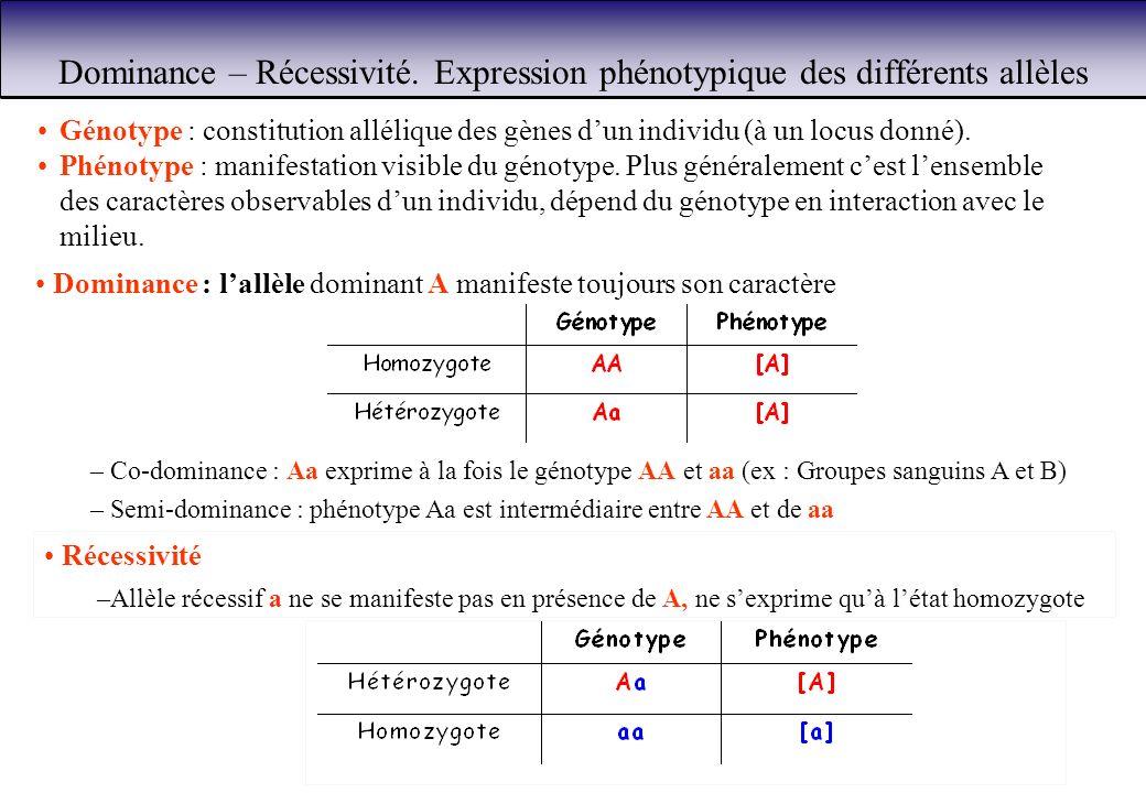 Dominance – Récessivité. Expression phénotypique des différents allèles