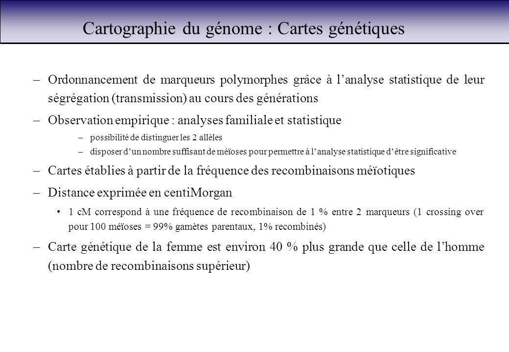 Cartographie du génome : Cartes génétiques