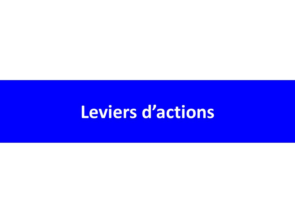 Leviers d'actions