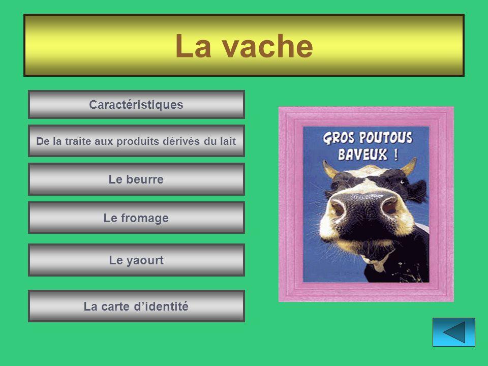 De la traite aux produits dérivés du lait