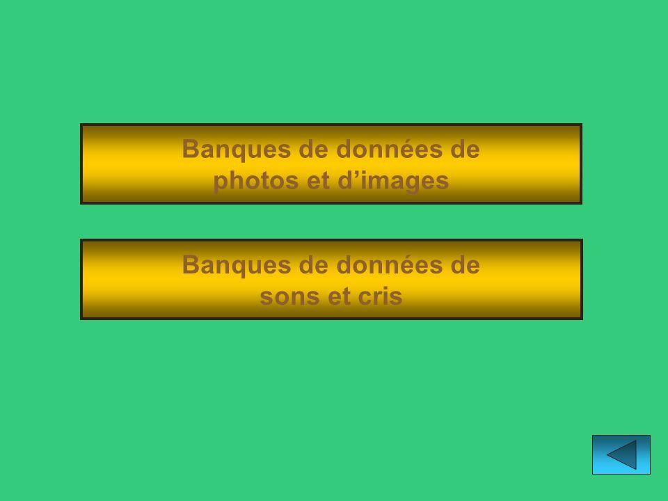 Banques de données de photos et d'images Banques de données de sons et cris