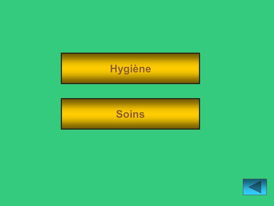 Hygiène Soins